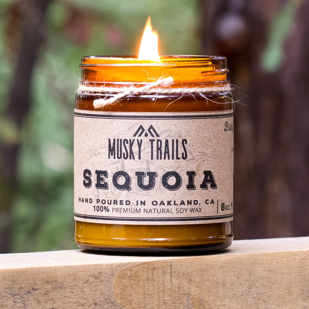 sequoia national park candle 8oz amber jar lit nature bg