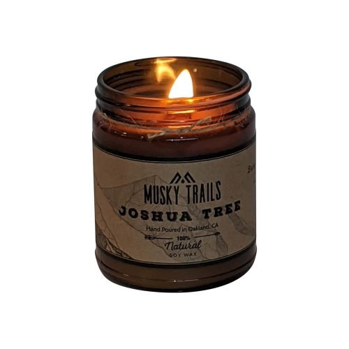 joshua tree national park candle 8oz amber jar lit